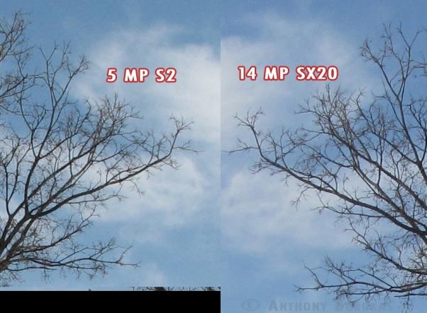 5x14compare2.jpg